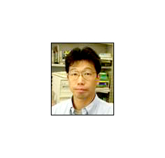 Shin-ichi Meguro (Senior Researcher; Dr. of Engineering)
